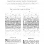 Consecuencias_imprevistas_El_impacto_des-1-1-001